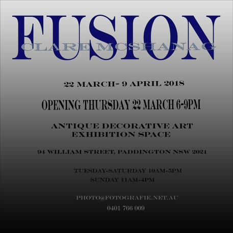 FUSION flyer backx1